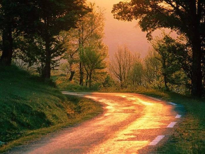 rêve chemin route lumière