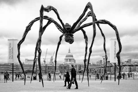 rêve immense araignée grande