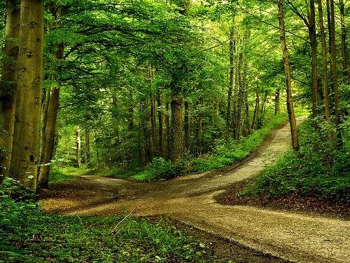 rêver carrefour croisée des chemins