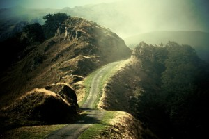 Le-chemin-lumineux