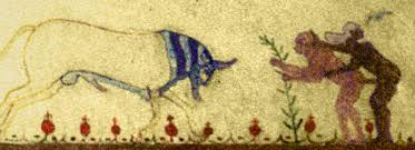 talisman taureau