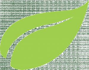 icon-feuille-vert