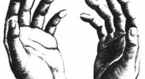 Chiromancie : La forme des mains