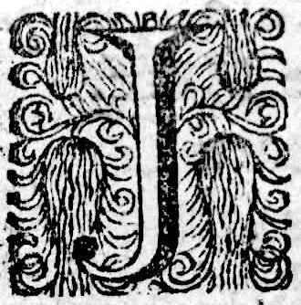 La lettre J - 1