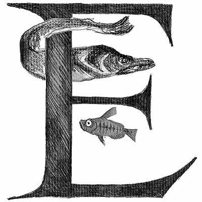 Numérologie lettre E