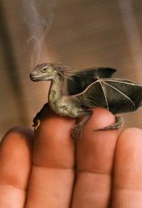 bataille dragon intérieur