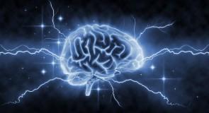 Rêver de cerveau
