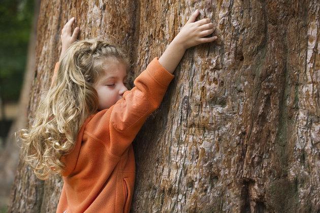toucher du bois enfant arbre