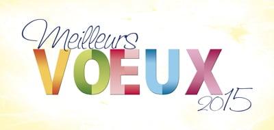 carte-de-voeux-2015-rectangle