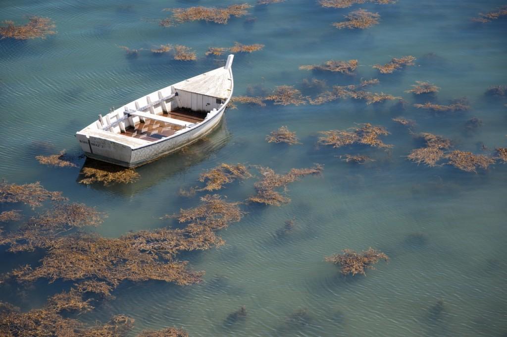 barque-abandonnee