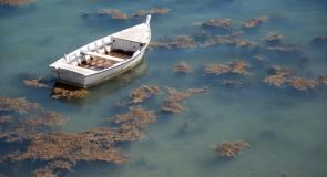 Rêver de barque