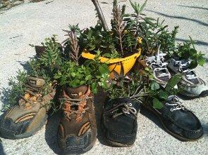 plantez_vos_chaussures