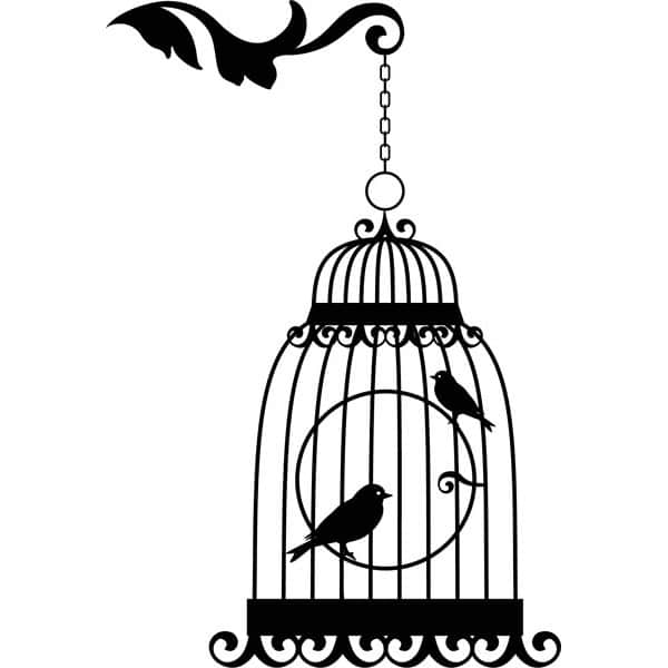 stickers-cage-oiseaux