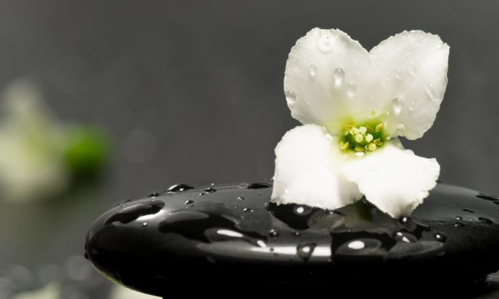 zen-nature-nice-photography-landscape-hd-travel-123886