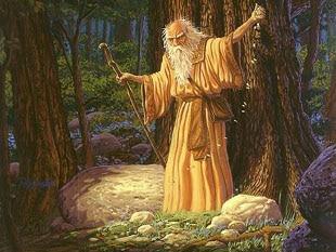 image-druide
