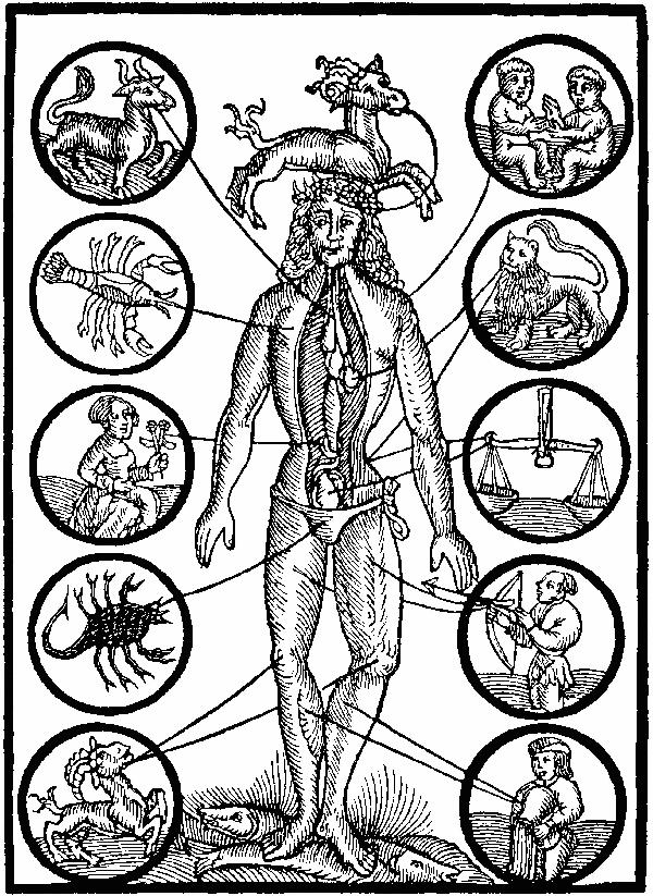 Les parties du corps associ es aux signes astrologiques - Cancer et sagittaire au lit ...
