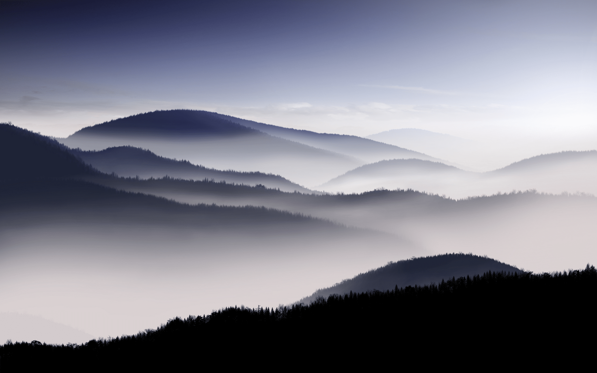 misty fog landscape wallpapers - photo #15