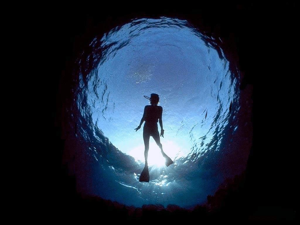 plongée